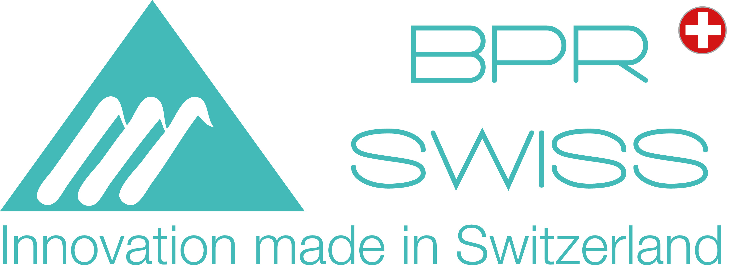 MAIN COMPANY LOGO 2014 innovation made in switzerland side green swiss cross